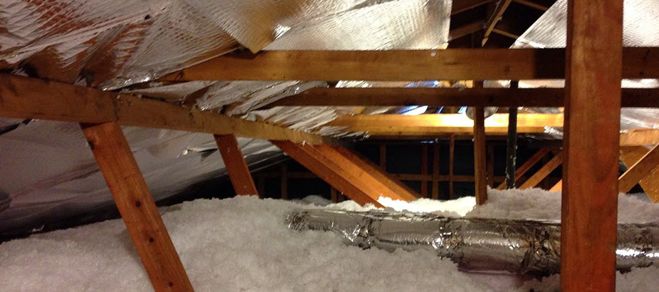 Attic Inspections-Home Inspection Mobile Alabama
