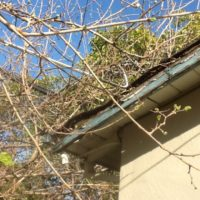 Mobile Alabama Roof Inspection